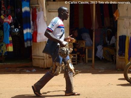 Venedor de mata-rates, al mercat de Foumban, amb les proves de la seva eficàcia