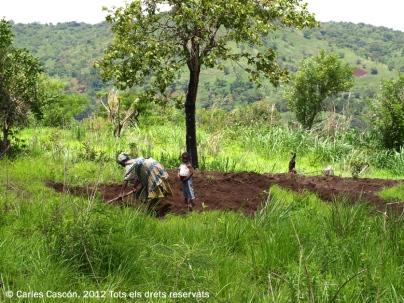 Dona cultivant un trosset de terreny als peus del Mont Mbapit