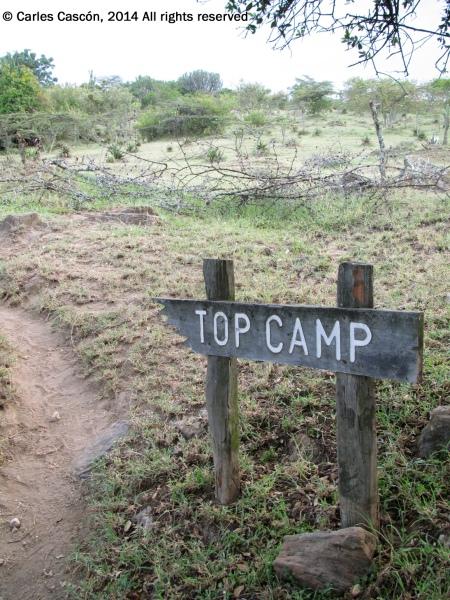 TopCamp_Naivasha