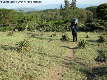 Camino al Top Camp
