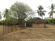 Construyendo casa en Nyuma Maji