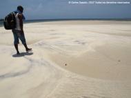 Sandbank, Funzi Island